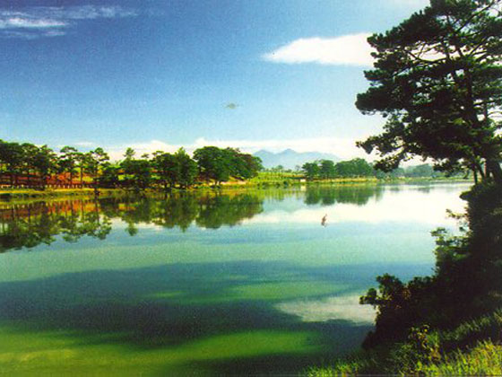 city-of-dalat.jpg - 80.13 Kb